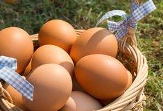 Hardknott Bar for Real Egg Hunt