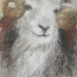 Jenni Payne Herdwick Sheep