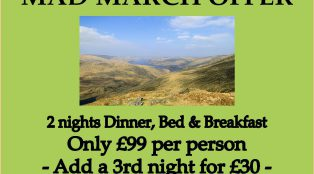 Mad March DB&B Offer!